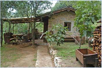 house in toscana case in toscana vendita casa in